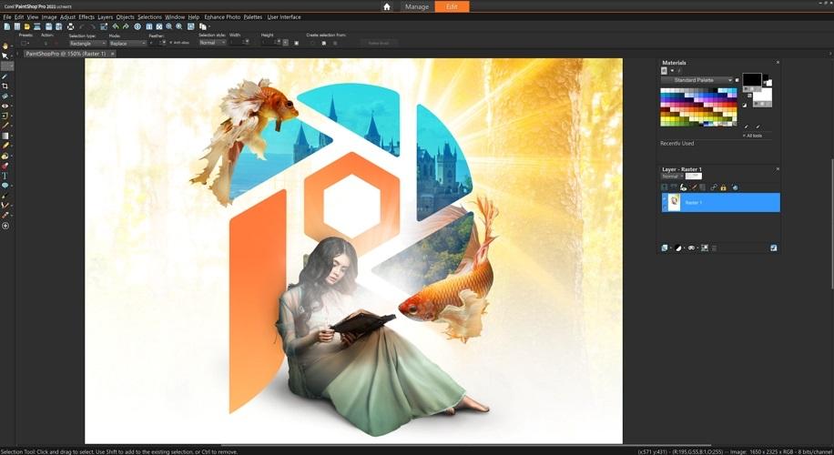 Editor PaintShop 2021