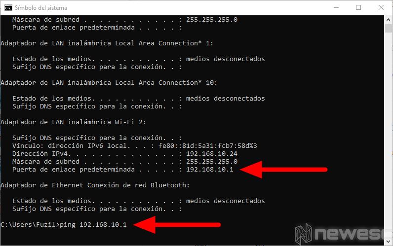 Hacer Ping desde CMD Windows 10
