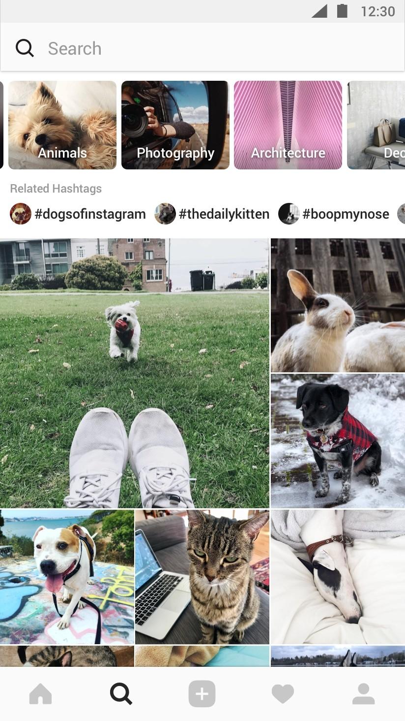 Instagram fotos de búsqueda