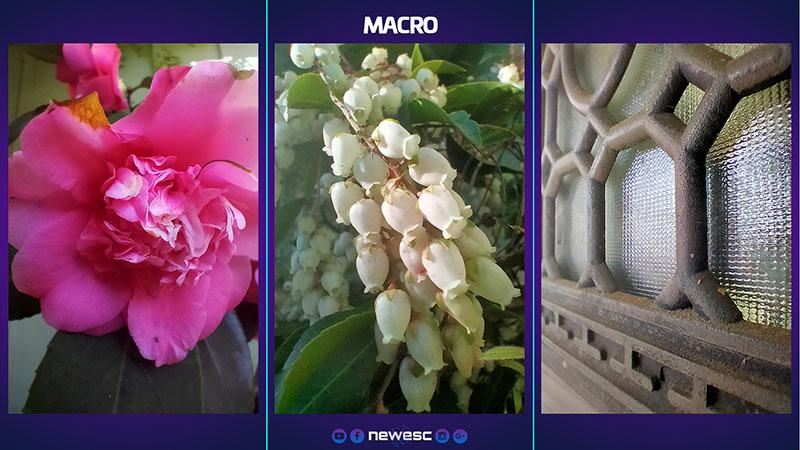 Realme 5i Fotos macro