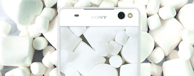 Sony wallpaper blanco