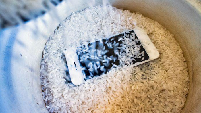 smartphone en arroz