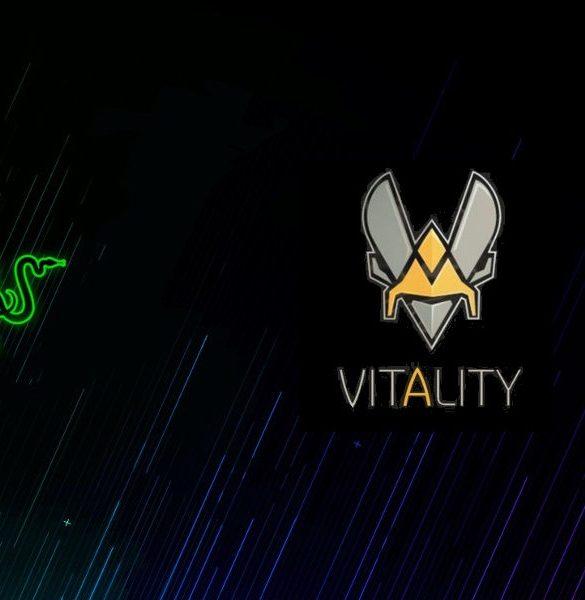 team vitalty razer