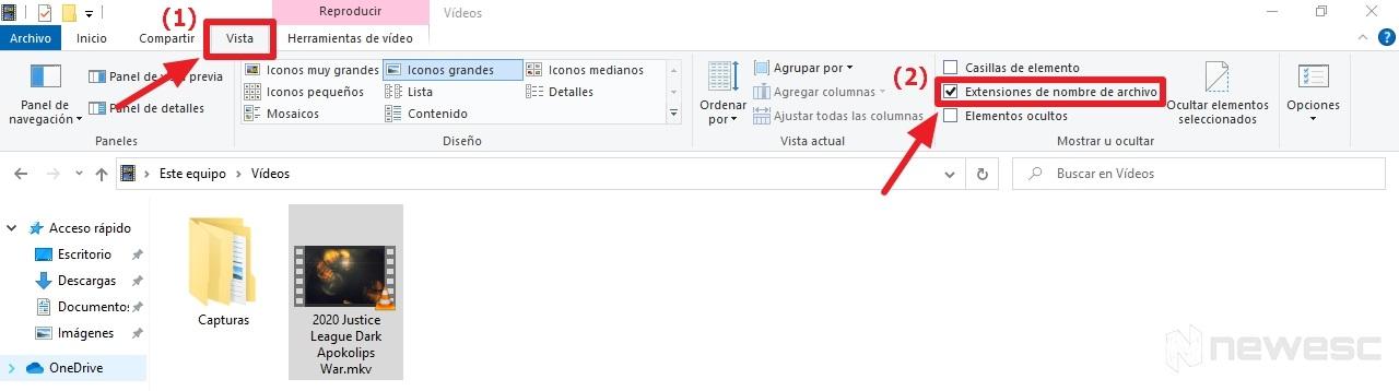 ver Extensiones de Archivos